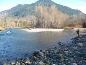 Cascade river hatchery upstream