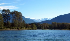 skagit-river-fishing
