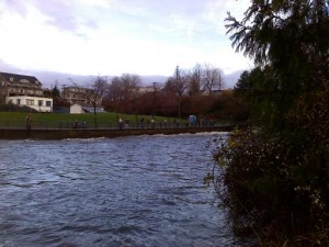 whatcom creek