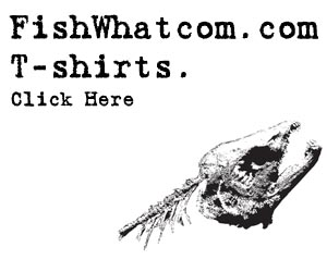 fishwhatcom t-shirts